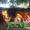Jeeva, Cocina Tradicional Del Sur De India